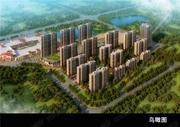 中城国际城