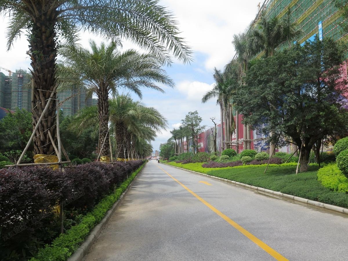 广州万达文化旅游城实景图-小区道路
