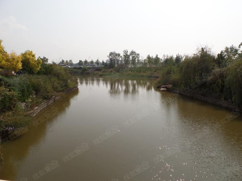 卓越·蔚蓝群岛实景图之河流