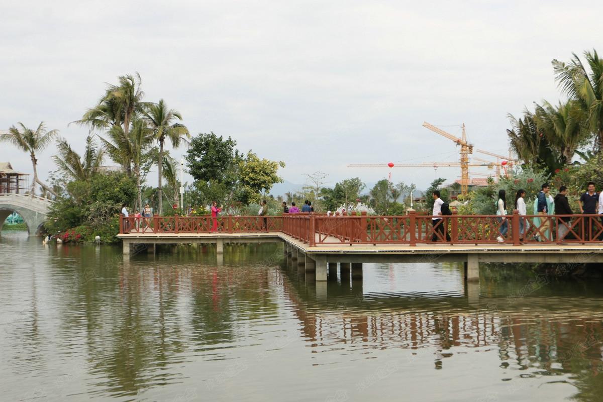 碧桂园珊瑚宫殿别墅实景图-清水湾中央公园-三亚搜狐
